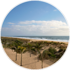 Direct Oceanfront Location