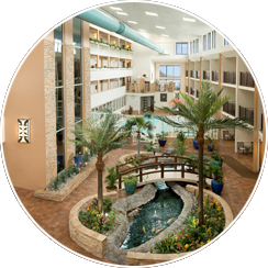 Indoor Pool, Hot Tubs, and Atrium Cafe located near Tropical Atrium